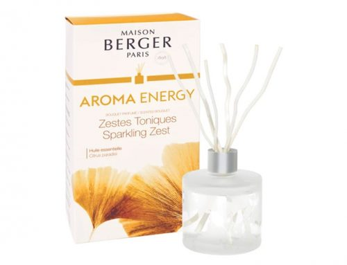 Lampe Berger Aroma Energy Raumduft Diffuser